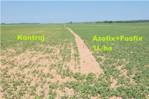 azofix+fosfix2
