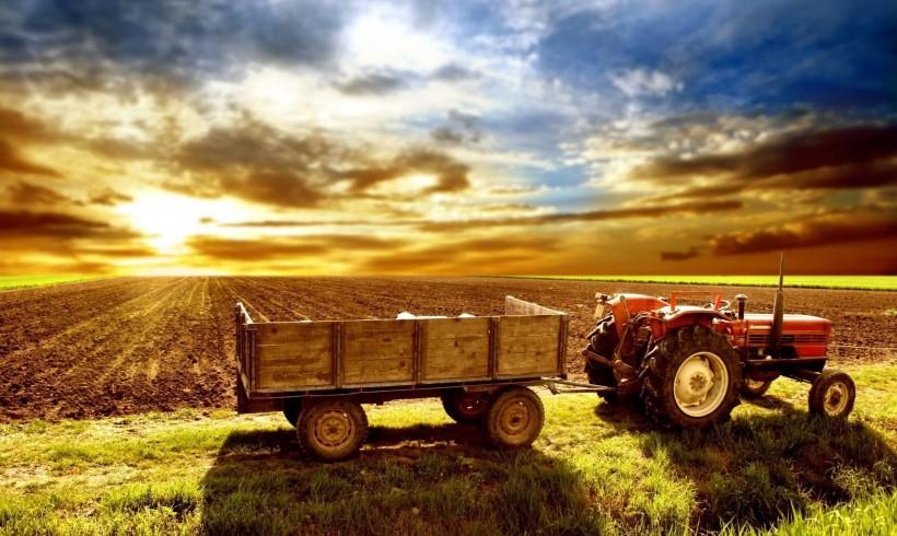 Calendarul fermierului – Lucrări în câmp în luna septembrie