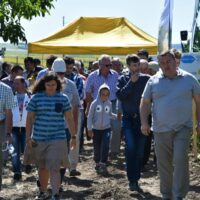 Vino la Field Day AgroFest 2019 (CV,TL,SV)