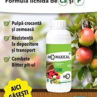 InO Maxical calciu și fosfor pentru recolte de calitate