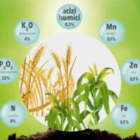 Revitalizarea culturilor afectate de stres prin echilibrul macro și microelementelor
