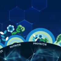Tehnologii integrate 2021:  Nutritie & Protectie la floarea soarelui