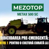 MEZOTOP – Erbicid selectiv pentru cultura de rapiţă